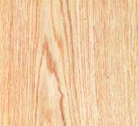 Picture of White Oak wood sample